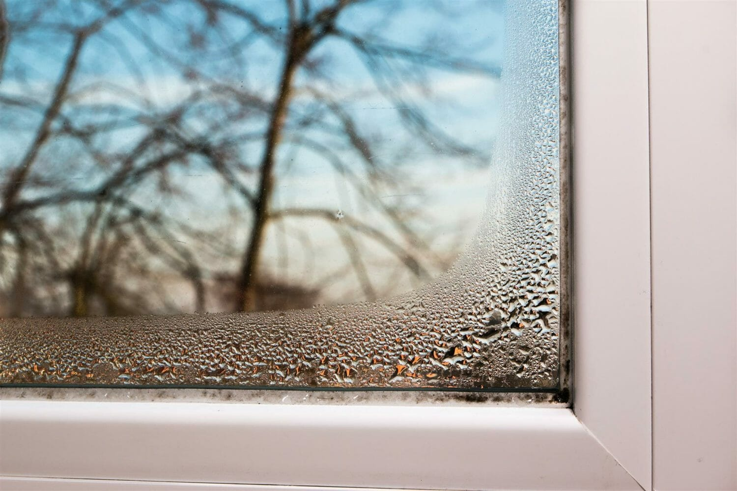 How to Deal with Humidity in Your Home